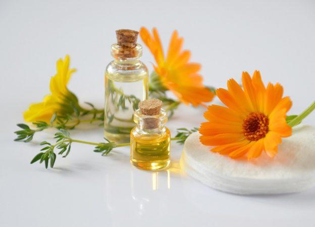 Speech Sample Essential Oils and Epigenetic