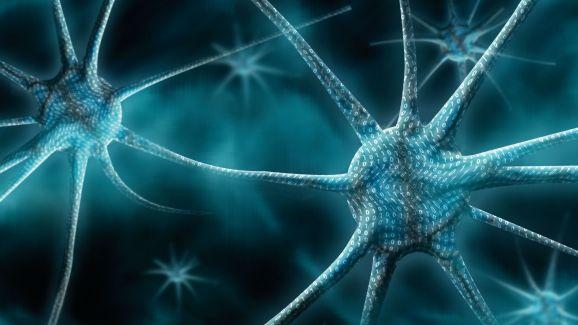 Virus_synapse-578-80
