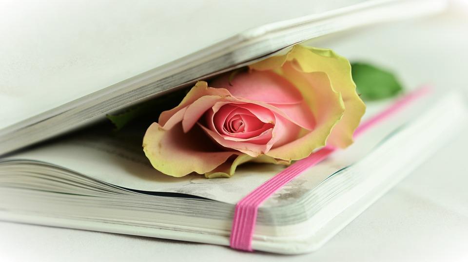 Academic Essay Poetry Analysis Sample