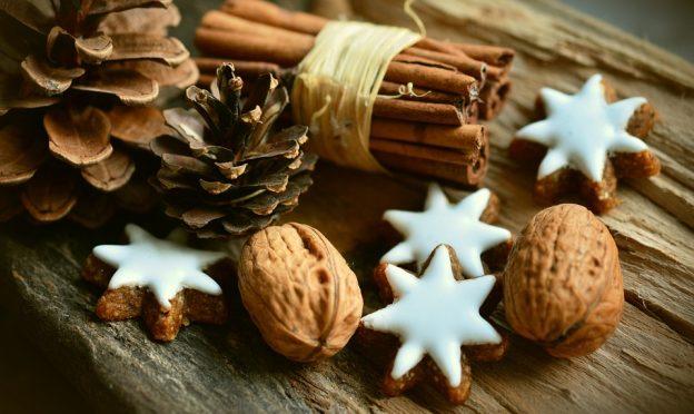 Christmas Greetings from EssayShark